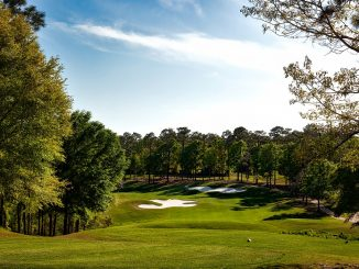 magnolia-golf-course-1613268_1280